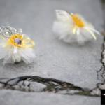 сватбен фотограф Пловдив Петя Иван 2014 сватбена фотография 140