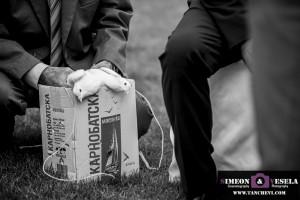 сватбен фотограф Пловдив София Бургас 2016 сватбен репортаж 431