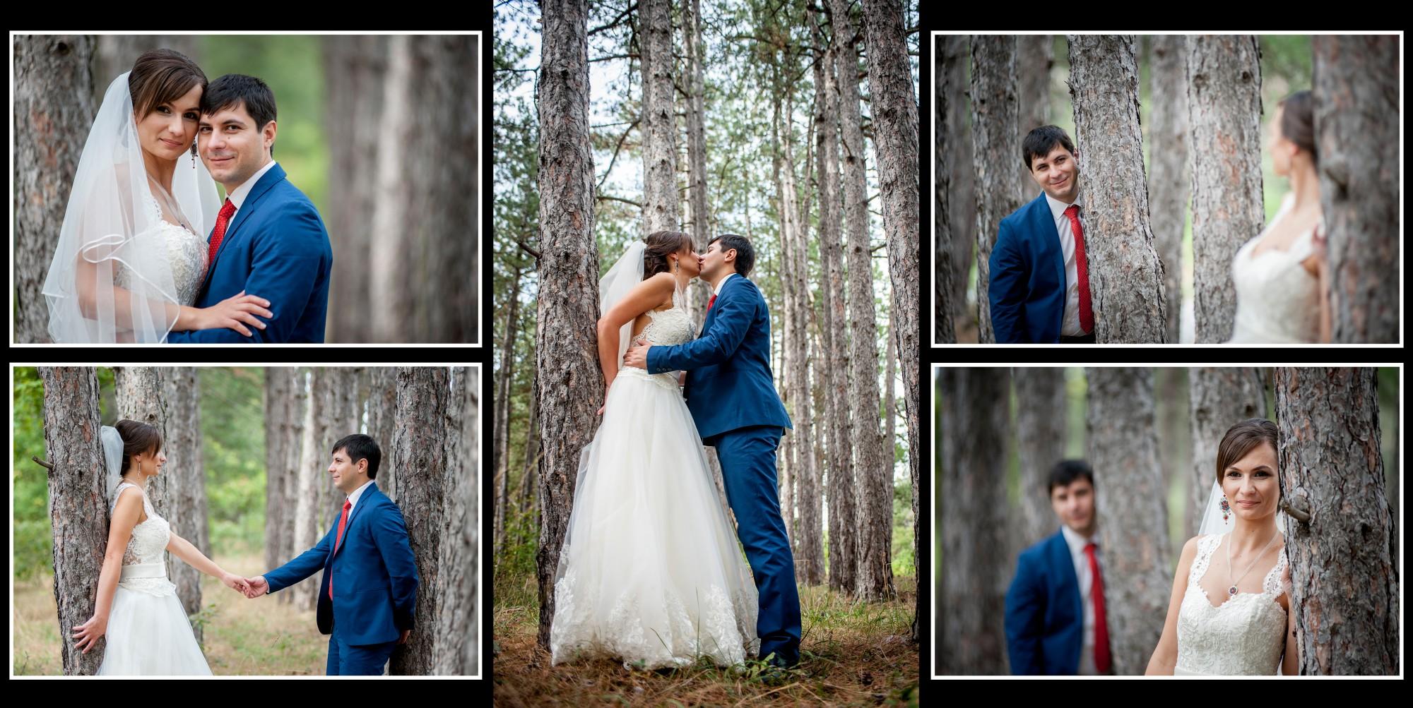 Сватбена фотокнига, сватбен фотограф, Пловдив, Панагюрище 2016-3-5